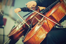 Violin image (2).jpg