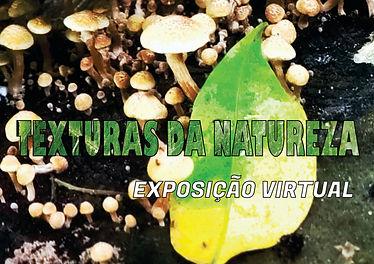 TEXTURAS CAPA.jpg