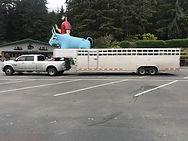 bullshippers