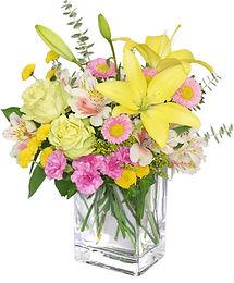 floral-freshness-spring-flowers-VA1309.4