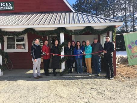 Business Spotlight - Willow Farm Pet Services