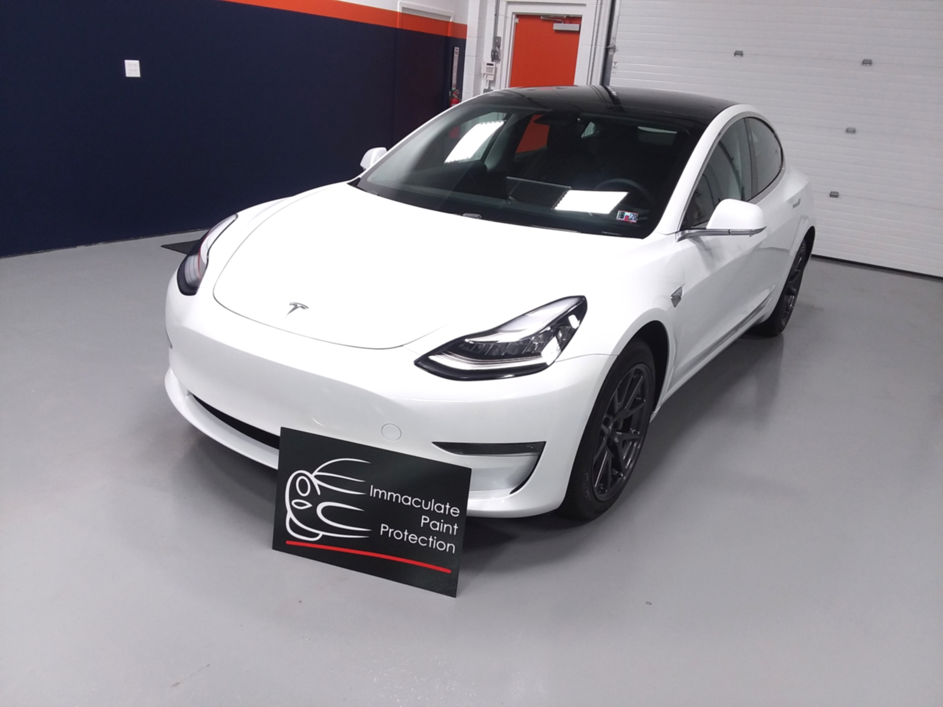 2019 Tesla Model 3 Paint Protection
