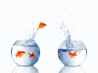 Pourquoi externaliser le marketing de votre entreprise?