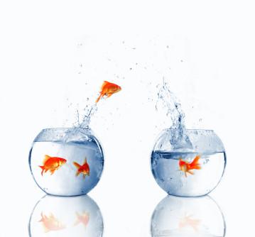 L'Atelier Marketing - 10 bonnes pratiques pour se différencier