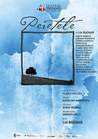 Spectacol-de-teatru-Peretele-Marcela-Mot