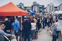 FP CHandlery Square dogs.jpg