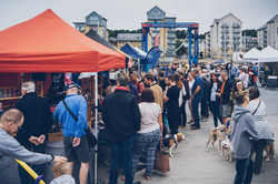 FP CHandlery Square dogs