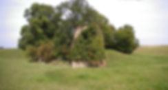 Ruines du Château de Longchamps 2011
