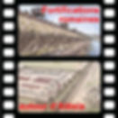 picto video fortif romaines.jpg