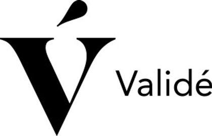 valide_logo_horizontal_black_rgb-300x192[1].jpg