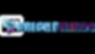 Brightwings Logo - Gen Regular with word