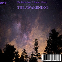 #23 MP3 THE AWAKENING.jpg