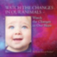 CVR_frnt-ChangesAnimals&Sky_12-11-2018sm