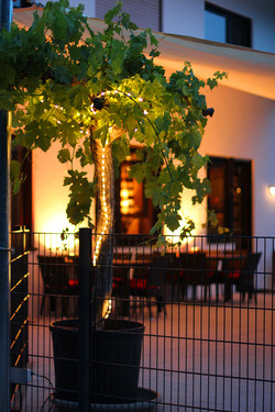 Linkenheim Terrasse Abends