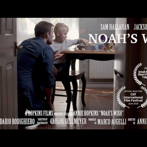Noah's Wish