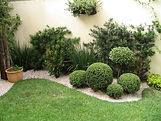 Jardinagens-paisagismo-poda-arvores-gramas-taubate-pinda-tremembe