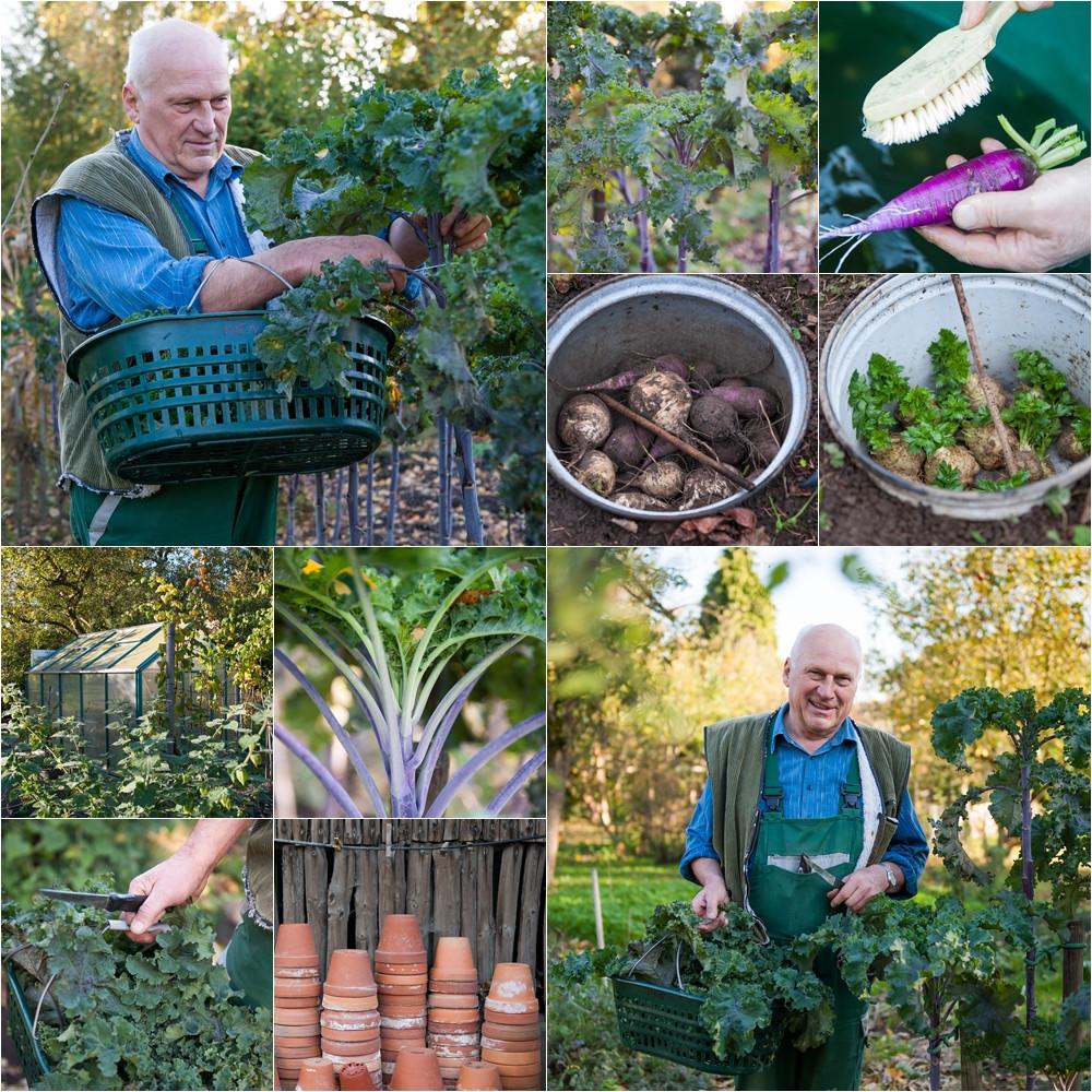 Der Garten Hentschel - Karin Goldbach Fotografie