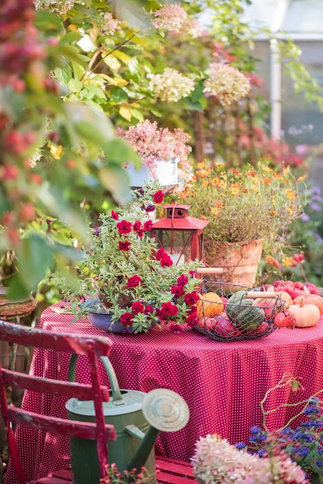 Oktobergarten
