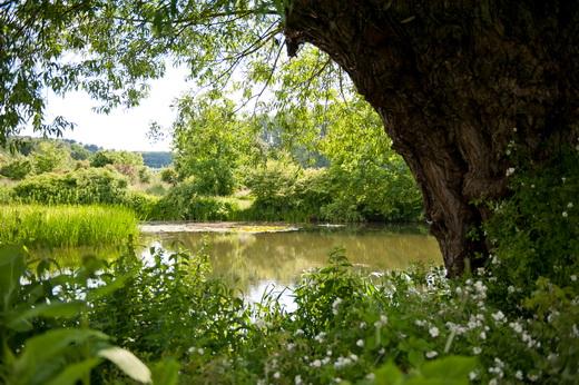 Garten Asemissen – Bolhof
