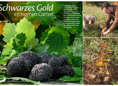 Schwarzes Gold im eigenen Garten