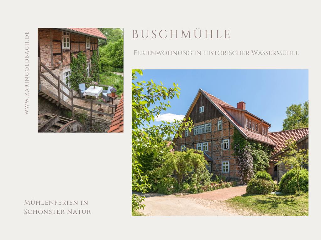 Buschmühle 01