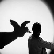 silvio_gioia_silviombre_teatro_ombre_1-e