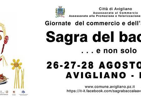 Spettacoli, laboratori e parate ad Avigliano (PZ)
