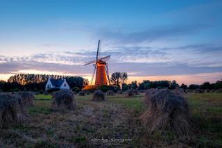 molen_de_roosdonck_2.jpg