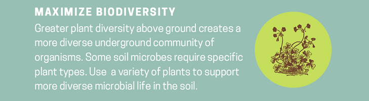 3rd Principal Biodiversity.png