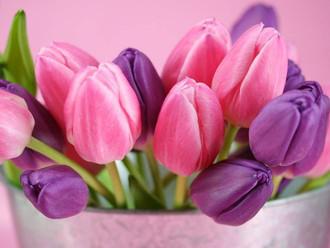 Поздравляем с 8 марта, милые женщины!