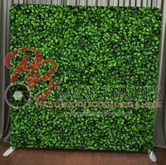 Greenery- Hedge Wall.jpg