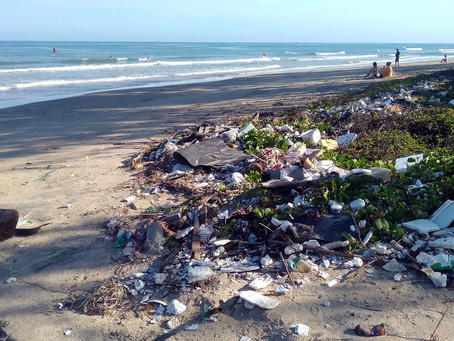 Plastic is Everywhere, Here's Why it Shouldn't Be