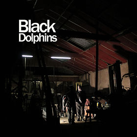 blackdolphins_front3000.jpg