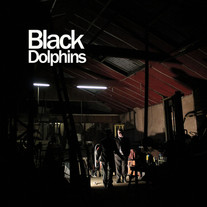 Black Dolphins : Happiness Is The Food Of The Devil
