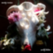 Pretty Bones_Album Cover
