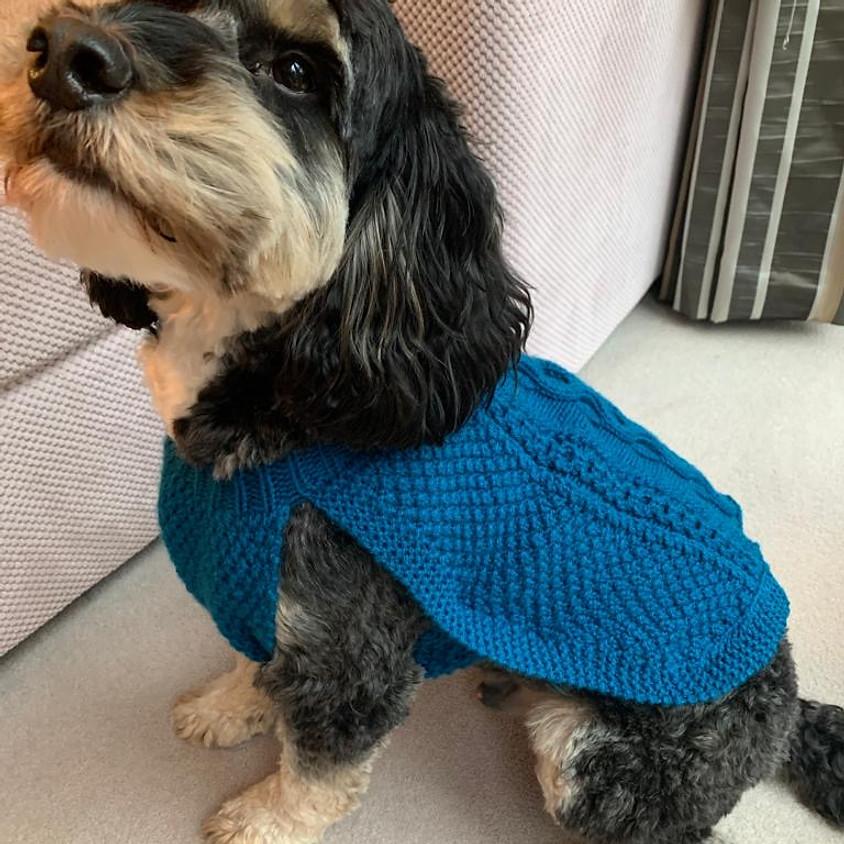 Knit a Dog Coat