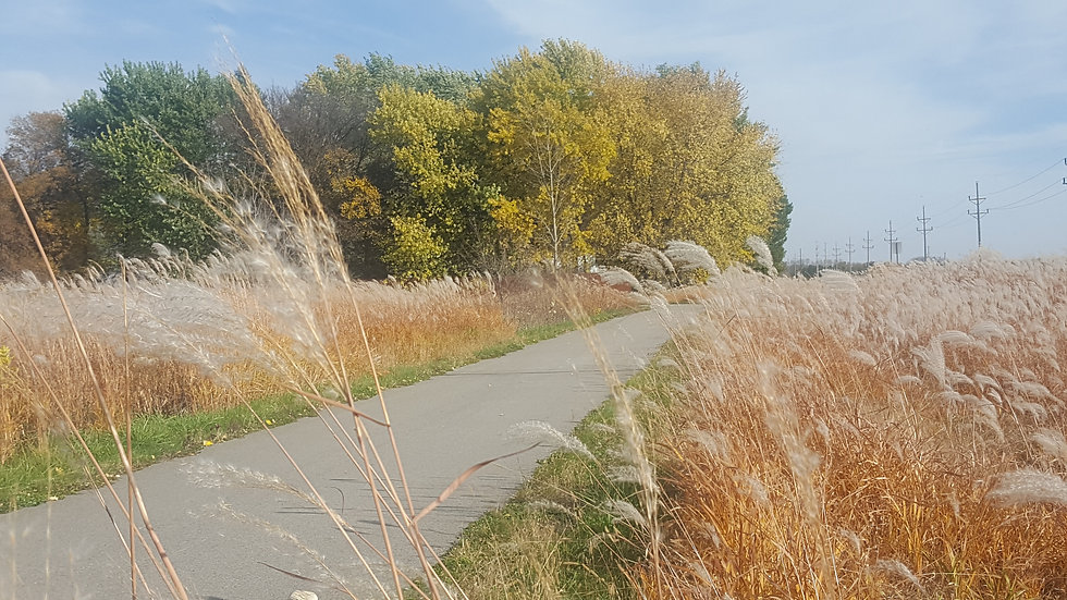 sakatah_singing_hills_trail_mankato.jpg