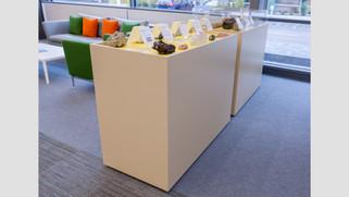 Artefact Display Unit