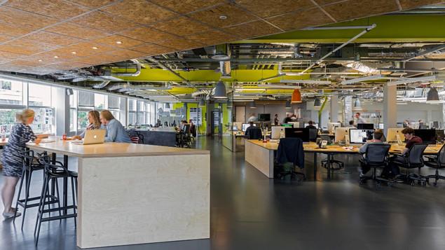 Bespoke Plywood Desk