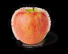 Honeycrisp_NYAS-Apples3.png