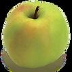 Shizuka-Apple11.png