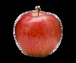 Royal-gala-apple.png