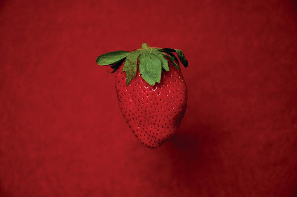 Flow Berry