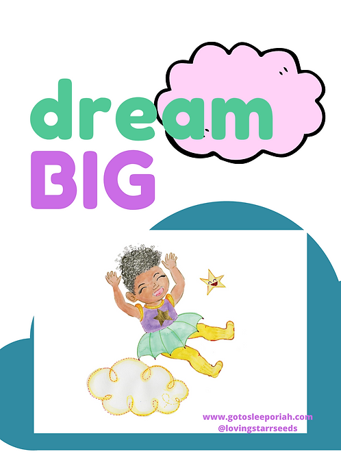 """GTSO  """"Dream Big"""" Poster (11x17)"""