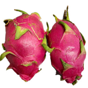 DRAGON FRUIT WHITE