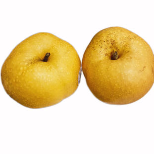 KOREAN PEAR