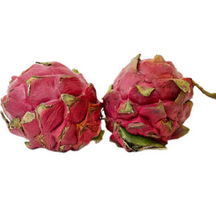 dragon fruit red