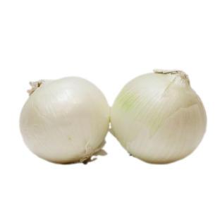 White Onion 白洋蔥