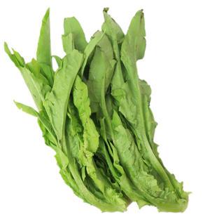 A Choy  油麦菜