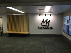 jps-mammoth-1